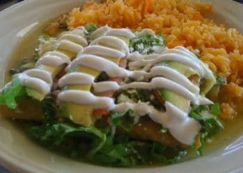 Chicken Enchiladas Diabetes Recipe