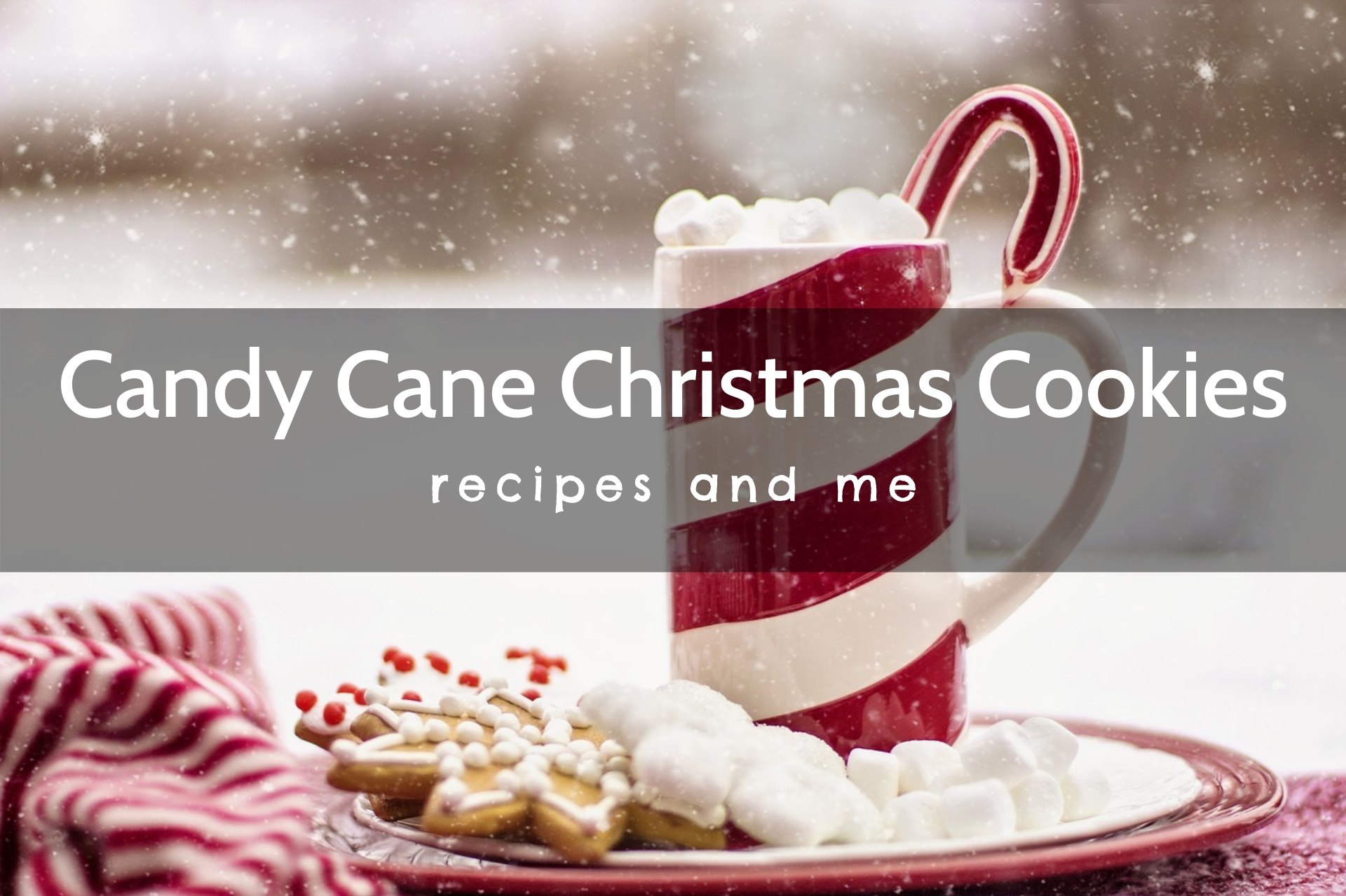 This candy cane Christmas cookie recipe is the perfect marriage of comfort and festive #decorated #kids #best #chocolate #nobake #andcandy #homemade #keto #DIY #CakeMix #inajar #desserts #appetizers #treats #breakfast #lunch # healthy #baking #decorations #snacks #traditions #cookies #glutenfree #crafts #art #recipes #sugar #cinnamon #cheesecake